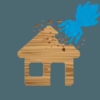 icone-termites-sud-traitement-e1487595271773